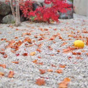 【ハンドメイドイベント京都】2016年11月13日(日)[城陽市・アクティ城陽商店街]山背 (やましろ) 彩りの市 2016\