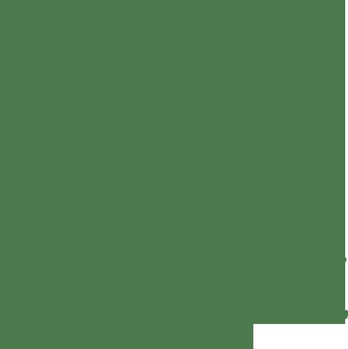 201610tokyopicnic