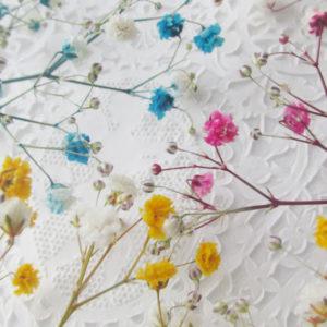 カラーかすみ草を作ろう!身近なアイテムで手軽に着色【ハンドメイド無料レシピ】 カラーかすみ草\